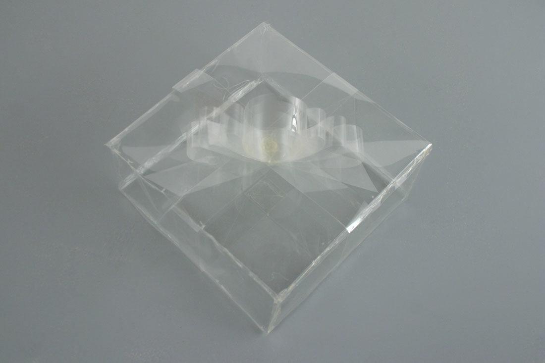 Transparent Present, 2007, acetate, 9 x 10 x 10 inches / 23 x 		  25 x 25 cm