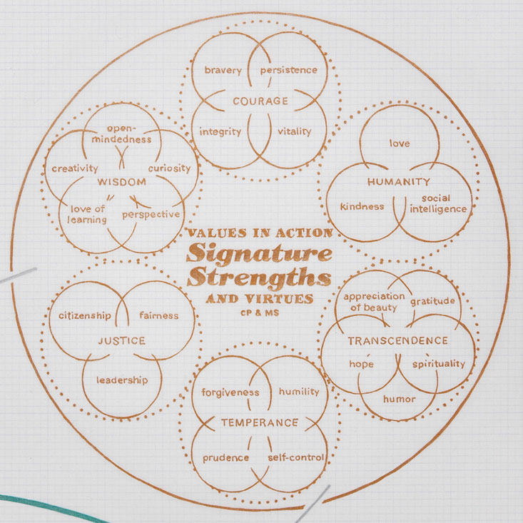 detail. zooms in on values in action: signature strengths and virtues: by Chris Peterson and Martin Seligman
