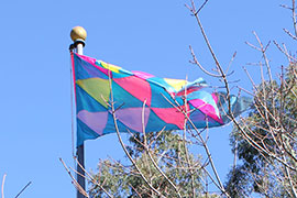 a flag with a triangular pattern of blue, light blue, and pink flying at the top of a flagpole amid a bare treetop.
