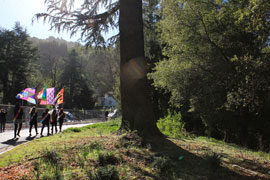 A photo of the flag bearers in the distance. They are walking past a wooded area. They are in the sunlight and the flags glow.