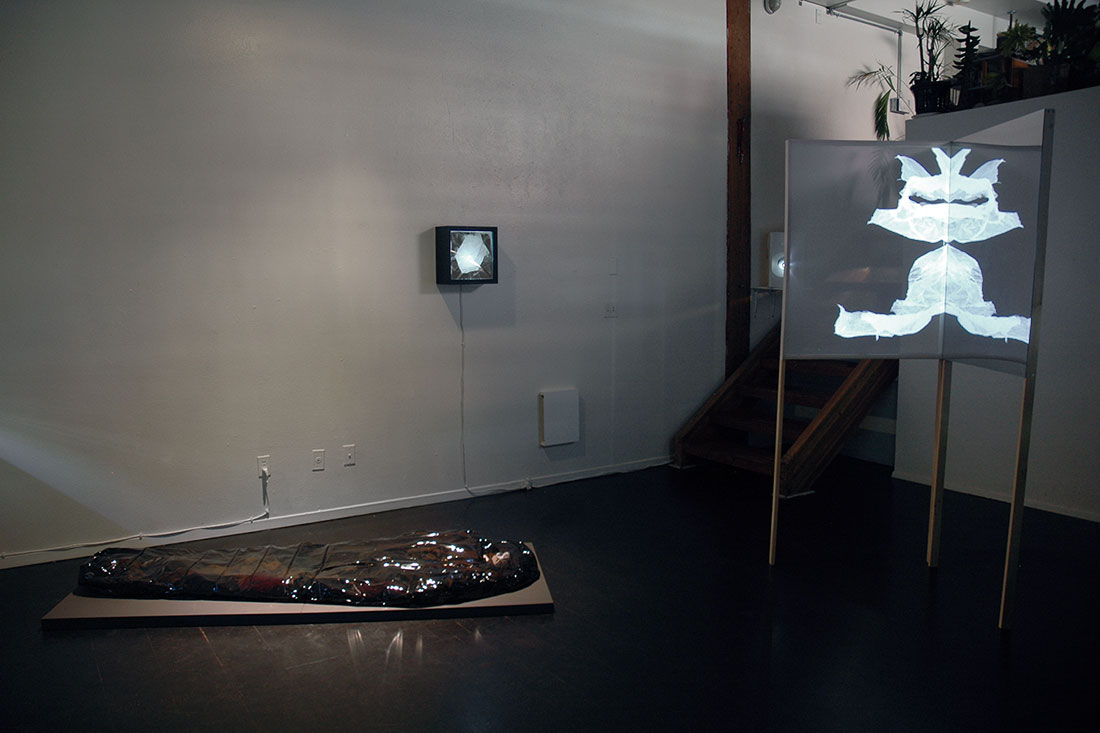 The Eve Of..., installation view at Portland 'Pataphysical Society, 2015